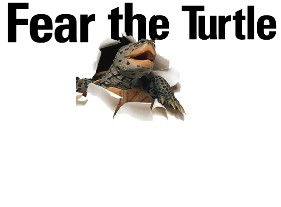 Fear_the_turtle